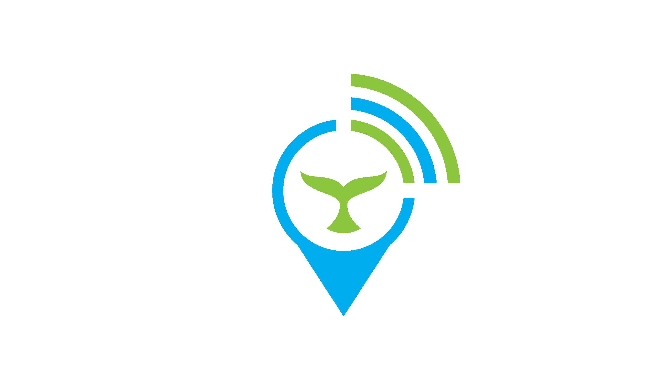 Wild Fins Logo